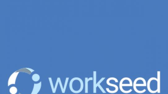 Workseed työelämässä oppimisen välineenä